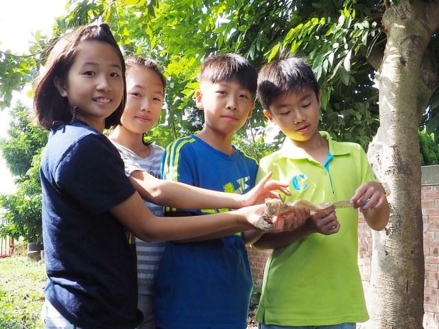 水林小秧自然農場 (5)