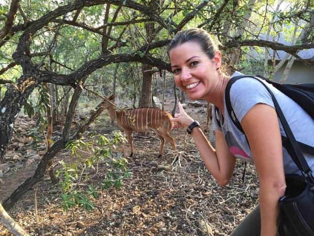 Dormir en un safari en África