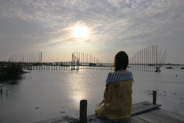 口湖成龍濕地 (3)