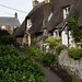 Row of cottages Cadgwith
