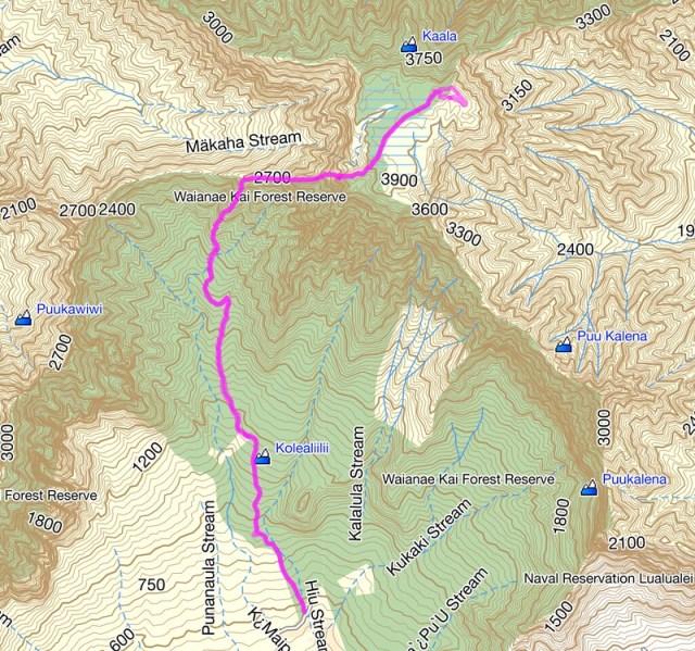 Mt. Ka'ala Topo Map