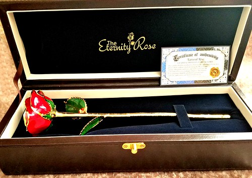 The Eternity Rose ~ The Perfect Gift
