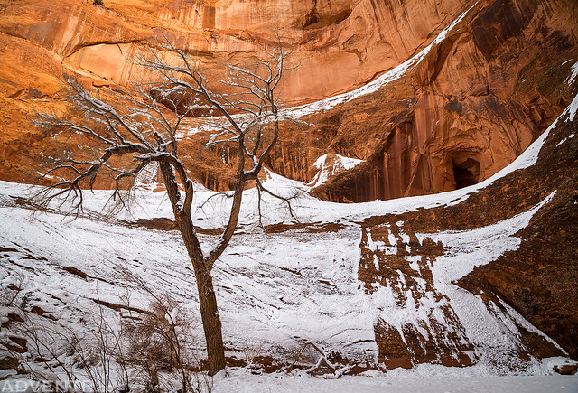 Wintery Canyon End