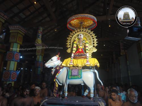 5ம் நாள் உற்சவம்-காலை-2017
