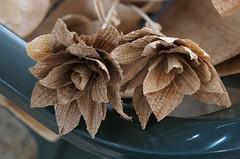 Flor Casca de Bananeira