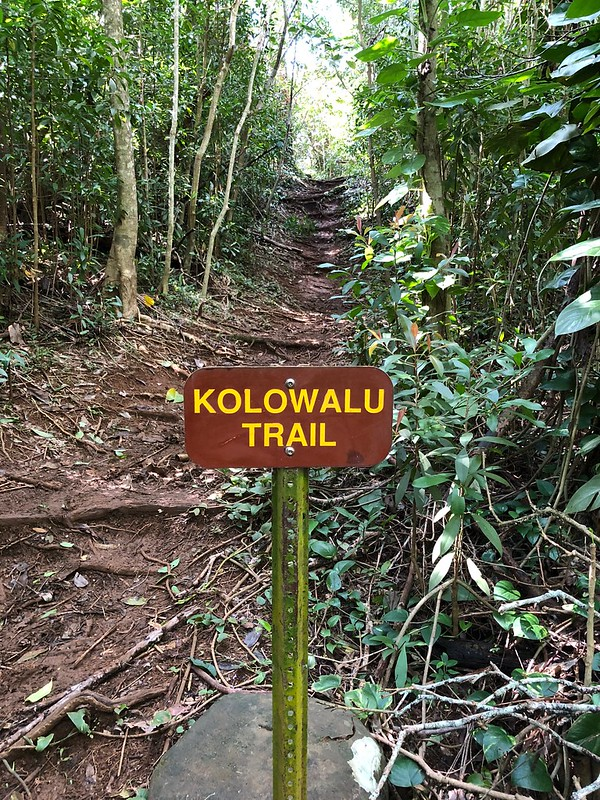 Picture from the Kolowalu Trail