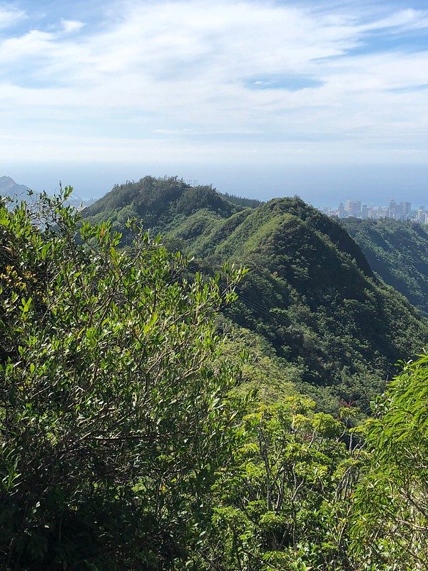 Picture from the Wa'ahila Ridge Trail