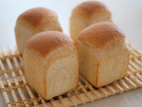 ホップ酵母の食パン 20170615-22-DSCT4006 (2)