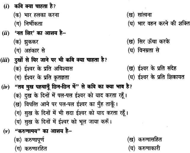 Chapter Wise Important Questions CBSE Class 10 Hindi B