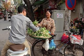 Selling Grapefruit flowers