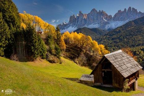 Maximum Autumn in the Italian Dolomites