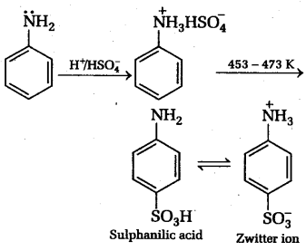 NEET Chemistry Notes Organic Compounds Containing Nitrogen