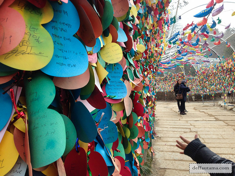 Nami Island - Love Wishes Alley