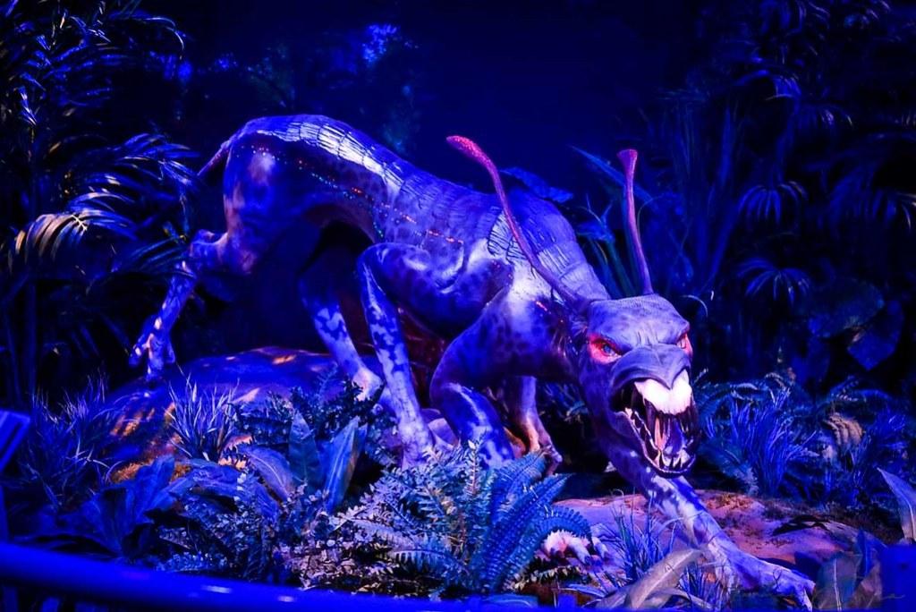 Avatar- Discover Pandora (25 of 71)