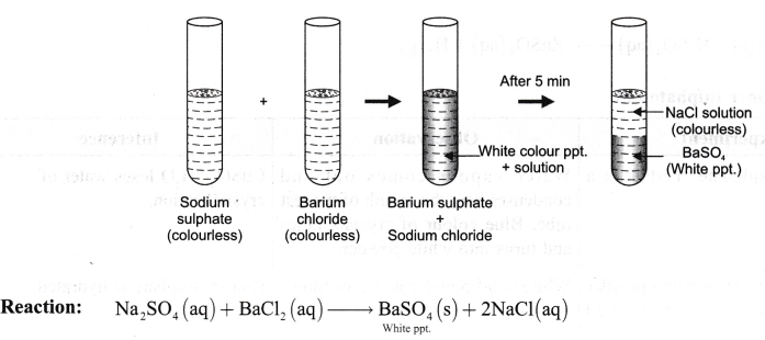 ncert-class-9-science-lab-manual-types-of-reactions-and-changes-14