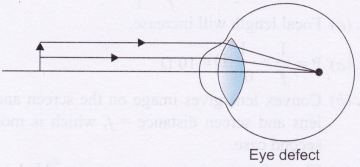 CBSE Class 10 Physics Refraction Through Prism Lab Manual