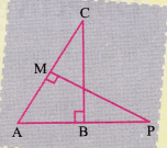 ncert-class-10-maths-lab-manual-basic-proportionality-theorem-triangle-15