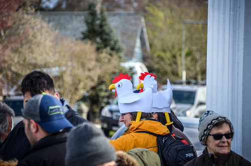 Edison Chicken Parade-4