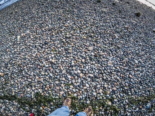 Samish Beach