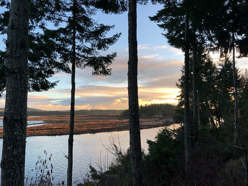 Nanaimo -  view from our campground