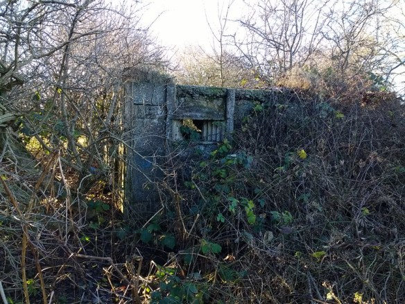 Pillbox West of Blackwell Bridge, Darlington
