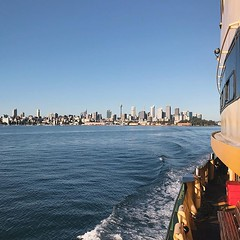 #sundaymorning #city #view from the #ferry @sydney @visitnsw @australia #ilovesydney #sydney #summer #newsouthwales #wanderlust #travel #australia #seeaustralia #sydneyfolk #australiagram #sydneytravel #travel #guardiantravelsnaps #guardiancities #lonelyp