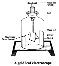 NCERT Solutions for class 8 Science Some Natural Phenomena