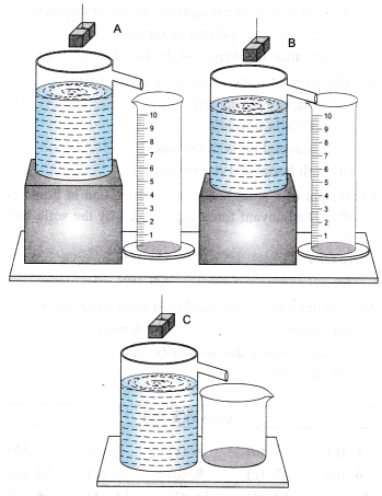 NCERT Class 9 Science Lab Manual - Archimedes' Principle