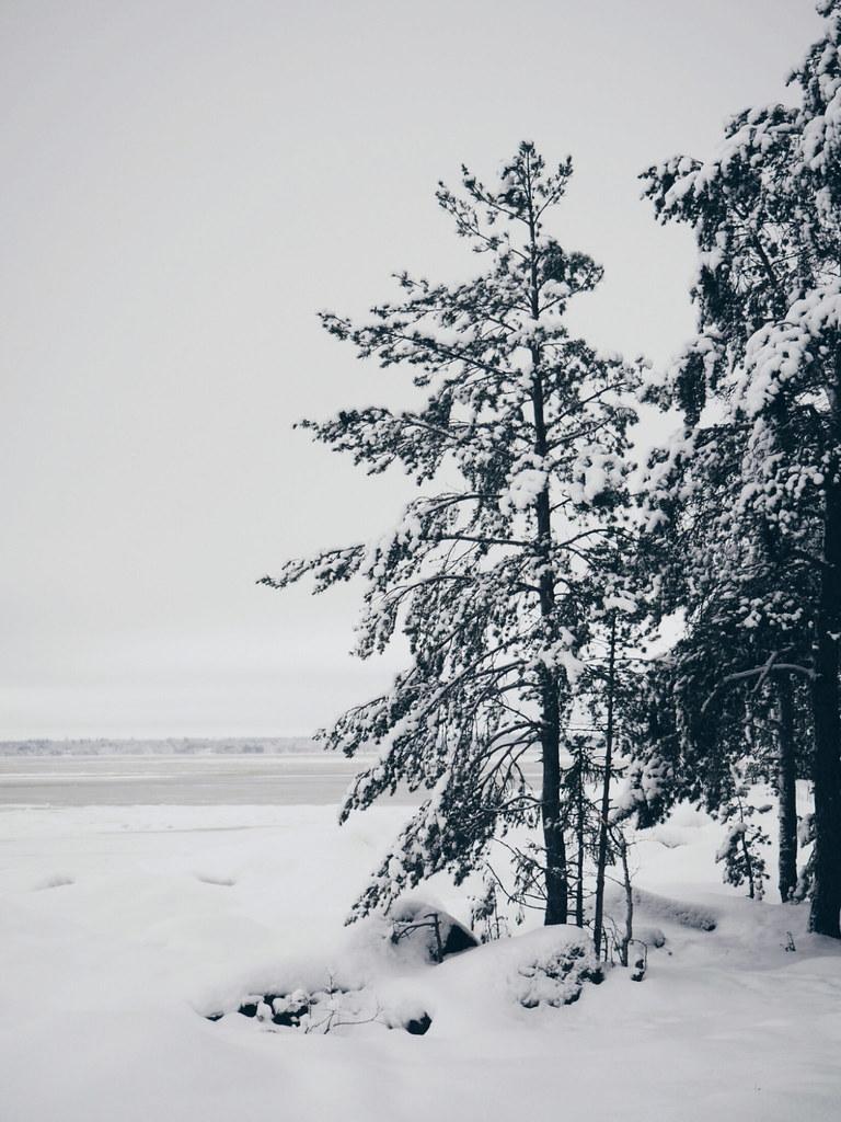 Sami-Petteri Asikainen, Vapaa-aika, 2018, uusi vuosi, luontokuvaus, valokuvaus