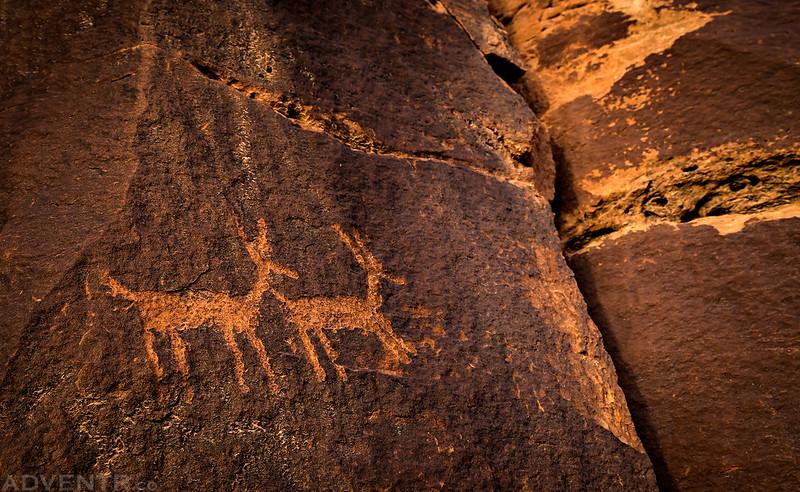 Two Petroglyphs