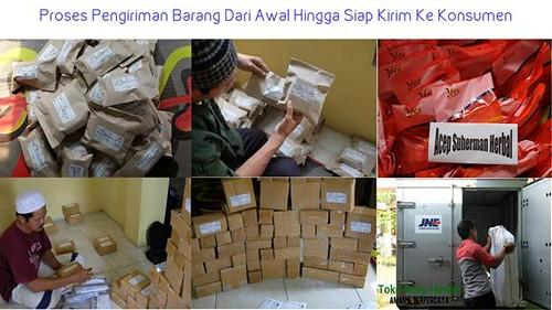 Agen QnC Jelly Gamat Di Sorong