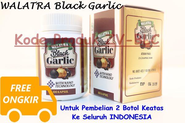 Obat HerbalBlack Garlic