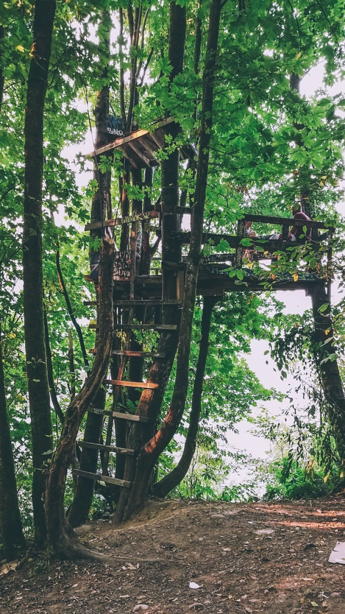 second narrows tree fort vancouver hidden gems