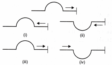 ncert-class-9-science-lab-manual-velocity-of-a-pulse-in-slinky-10