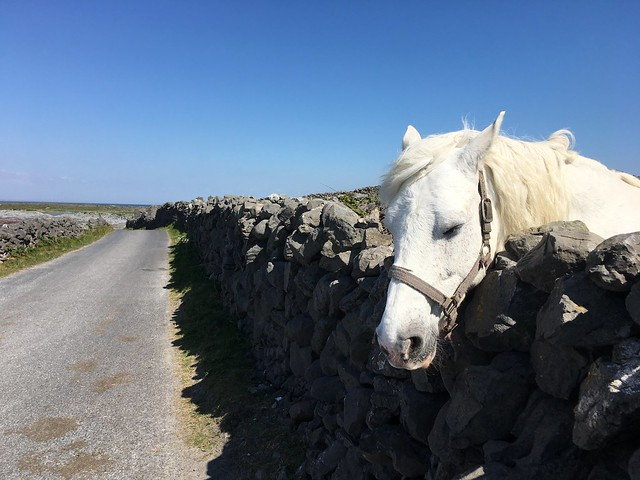 Inis Mór, Aran Islands, Ireland