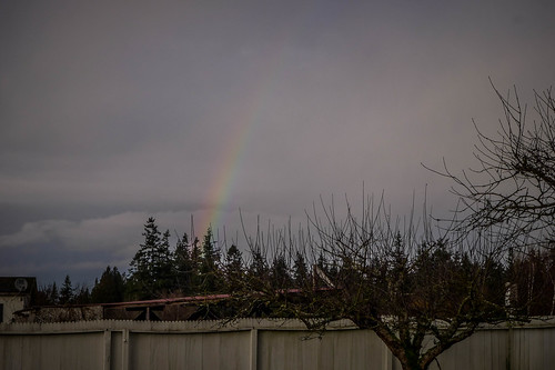 Samish Island Sunset and Rainbow-006