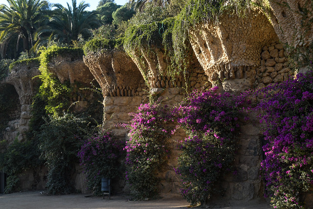 Park Guell Colonades
