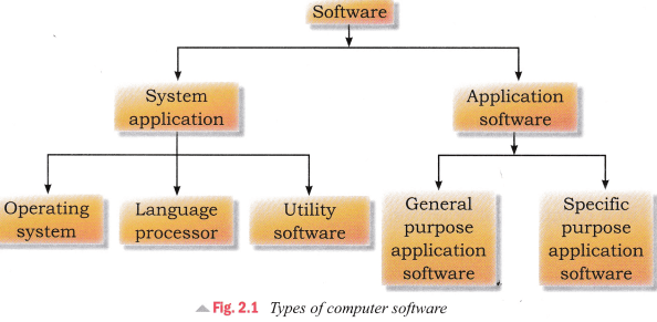 CBSE Notes for Class 5 Computer in Action - Computer