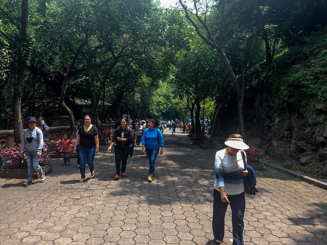 Walking towards Chapultepec Castle