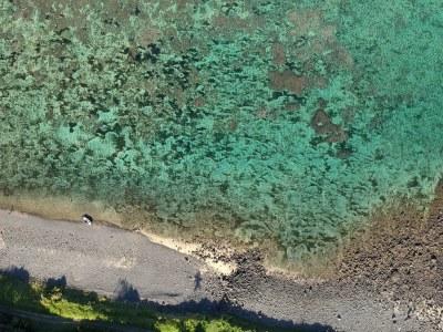 Tiny tinny #marineexplorer