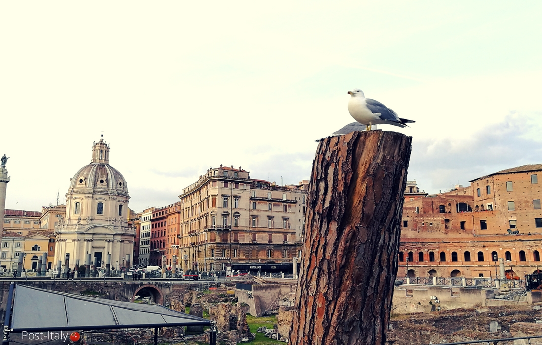 Fóruns Imperiais em Roma