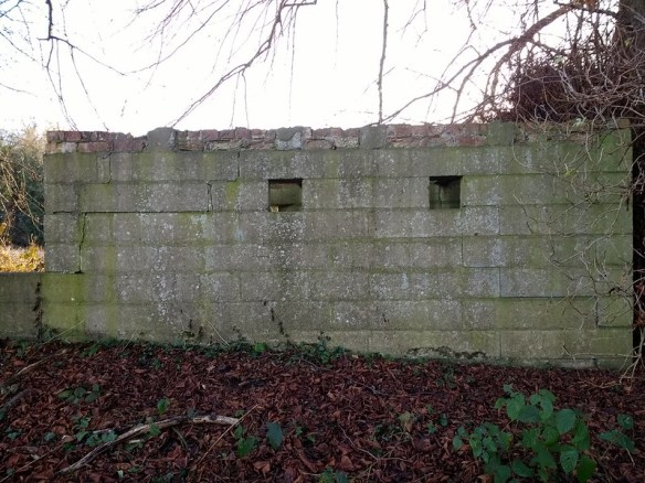 Pillbox East of Blackwell Bridge, Darlington