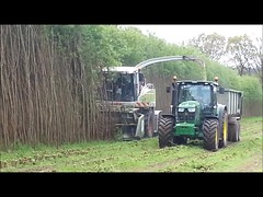 Cut harvest movie