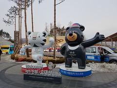 PyeongChang 2018 Jeux Olympiques 14/02