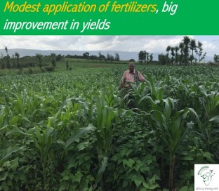 Modest application of fertilizers: a game changer in key ecozones!