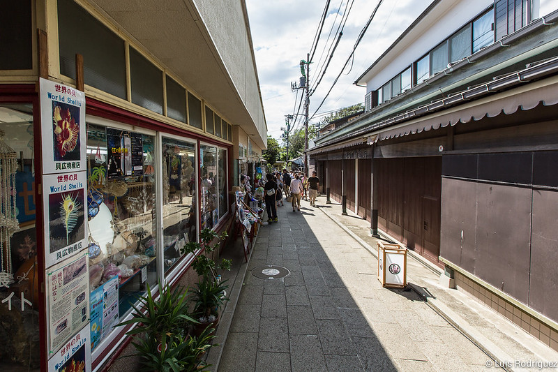 Excursion-Enoshima-Japon-64