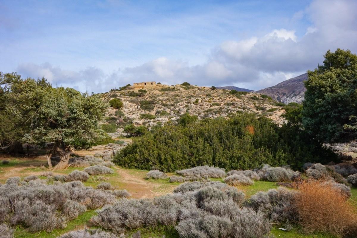 Patikointia Kreetalla: Elafonissi-Krios