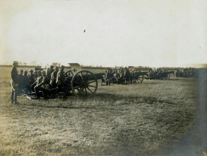 """Regimentul 4 Artilerie Roman ,,Regele Ferdinand I"""""""