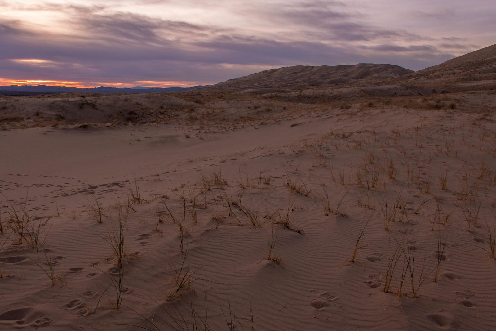 12.23. Kelso Dune
