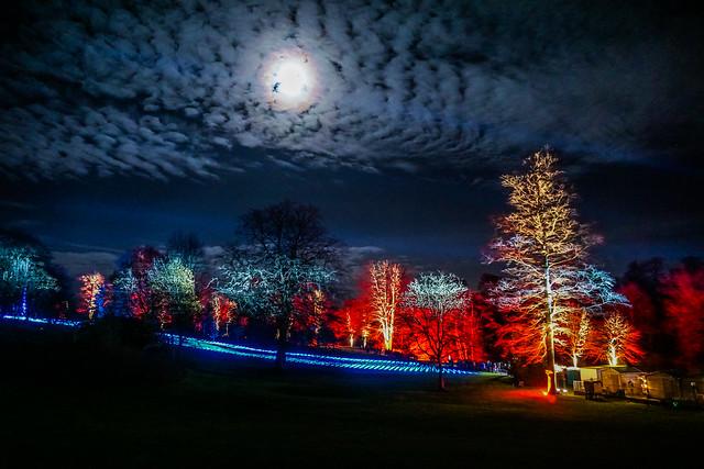 Christmas at Blenheim